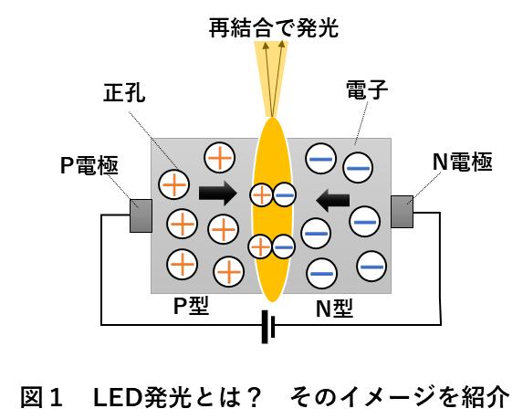 画像検査照明選び方 図1